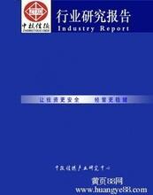 医药辅料生产项目可行性研究报告