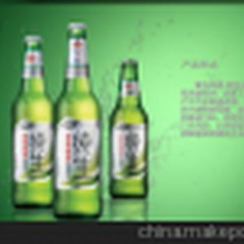 批发青岛纯生瓶装啤酒500ml12瓶/箱纯生