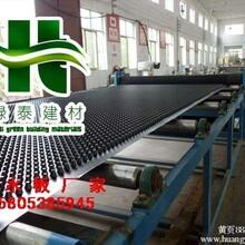 屋顶绿化隔根板/地下车库排水板/6公分排水板