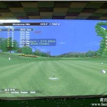 高尔夫室内模拟器含雷达探测系统