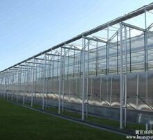 平度市现代智能温室图片