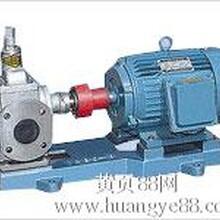 厂家直销巨兴牌不锈钢YCB圆弧齿轮泵图片