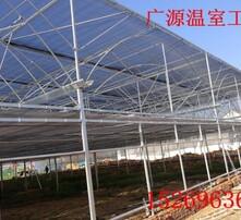 阳高县智能化温室图片