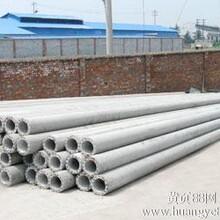 成兴电线杆供应优质电线杆