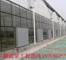 甘肃省现代温室园艺图片