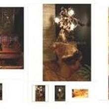 根雕风水灯茶几灯中式仿古落地灯中国风创意复古个性根艺灯茶几茶盘根雕灯酒店装饰,家居装饰