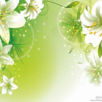 欧式淡绿色墙布