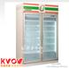 成都专业维修冰箱-冰柜-展示柜-冷风柜-冻库故障处理