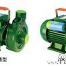 微型自吸清水电泵系列