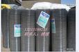 优质镀锌铁丝网铅网电焊网厂家直销保质保量