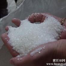 精制糖一级白砂糖批发价格