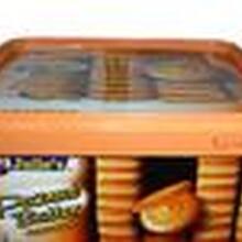 马来西亚进口EGO饼干糕点零食进口备案资料