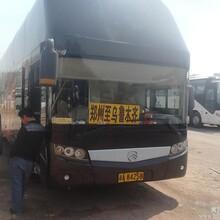郑州到乌鲁木齐汽车市内免费接送图片
