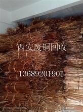 西安废铜价黄铜回收紫铜回收