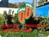 重庆花草牌/重庆溪水提示牌/重庆绿化带牌/重庆小区栏目公告牌/重庆公园导视牌