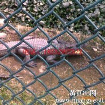 供应四川德阳包塑丝动物园围栏热镀锌丝养殖场围栏