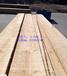 供应3.2公分厚4米长12公分以上自然宽辐射松烘干板材