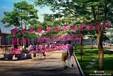 重庆中式园林景观别墅设计施工丨超低价格