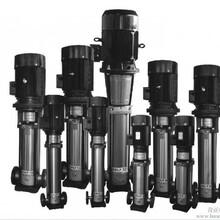 供应不锈钢多级离心泵销售多级泵安装维修图片