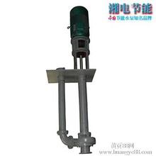 长期生产高质量25LSB-40A型浓硫酸液下泵