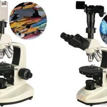 药厂专用偏光显微镜偏振光显微镜三目偏光显微镜