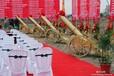 上海节日活动策划
