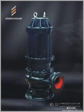 JYWQ自动搅匀潜水排污泵图片