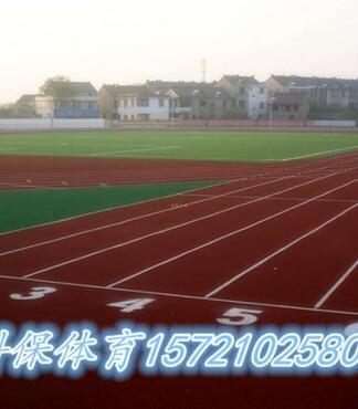 滨州400米标准塑胶跑道生产厂家球场围网 -塑胶跑道