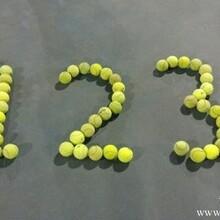 重庆网球培训班重庆网球教练重庆网球专业培训成人网球培训
