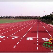 重庆体育培训中心成人青少年体育培训网球羽毛球高尔夫篮球培训
