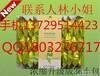 海丰县润生堂润生茶批发