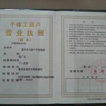 宁波鸵鸟一只多少钱?免费运输,全国包邮!图片