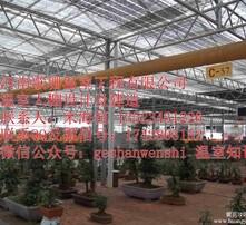 山西大棚公司,山西温室安装,山西大棚价格,山西温室供应图片