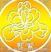上海自贸区贸易公司的注册各类商标申请专利李