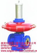 国产10年品牌RTZ-21/25Q液化气调压器