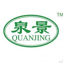 南京新品牌--泉景美缝剂招商加盟正式展开