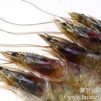 青岛港海鲜进口专业报关行,海鲜水产品进口清关代理