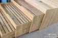 厂家直销幼儿园儿童床木制儿童床价格幼儿园儿童木床专卖