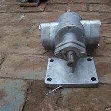 不锈钢KCB齿轮泵图片