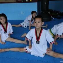 2014秋季少儿跆拳道综合培训自由选择黑带直通班
