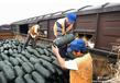霍尔果斯至莫斯科水果蔬菜运输专线