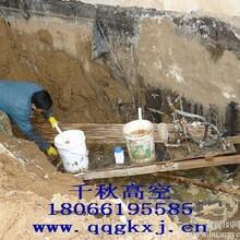 常州新建污水处理厂水池伸缩缝、施工缝、交接缝渗漏水堵漏