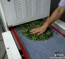 茶叶杀青设备,微波茶叶杀青,微波茶叶干燥图片