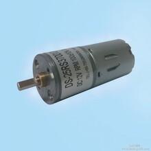直流减速电机DS-25RS370吸尘器电机智能马桶电机