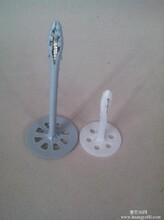 保溫釘塑料保溫釘電廠保溫釘低碳鋼保溫釘廠家直銷圖片