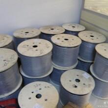 供应临朐视频光端机,青州光端机批发图片