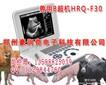 上海哪里有卖宠物B超机的?