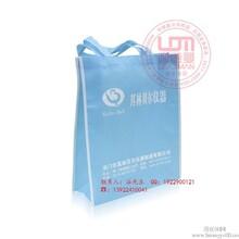 广东生产可折叠环保购物袋印刷厂广东加工食品冰包加工厂家