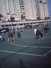 供应东莞少儿学篮球康之杰篮球培训周末班常年招生