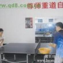 供应东莞康之杰乒乓球培训少儿学乒乓球班
